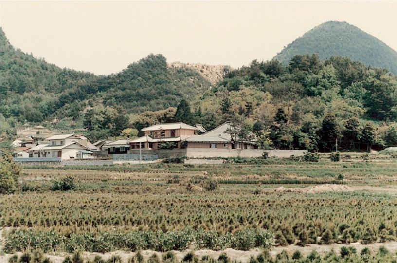 眞教寺の歴史